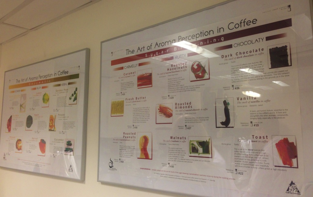 costa coffee, coffee tasting notes, coffee flavours,
