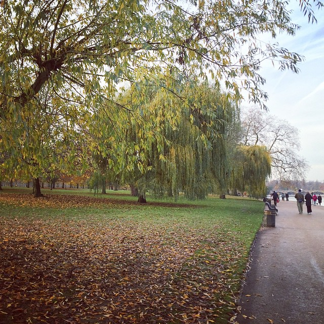 Adore this time of year ?????? #lbloggers #autumn #weekendaway #london #hydepark #meandhim