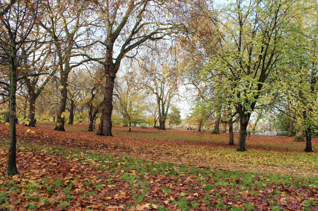 Winter Wonderland Hyde Park Review