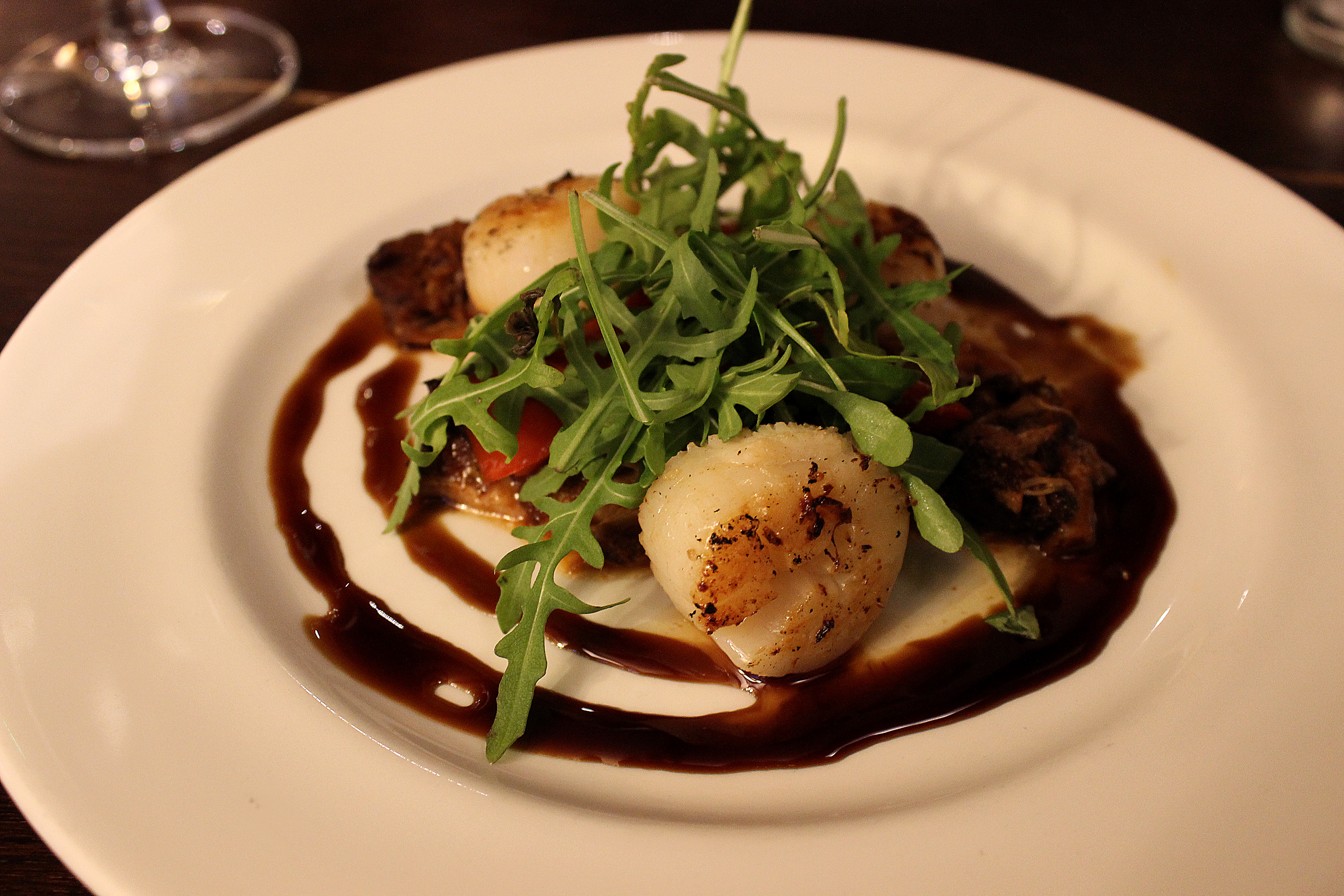 The Shire Horse Stafford Review