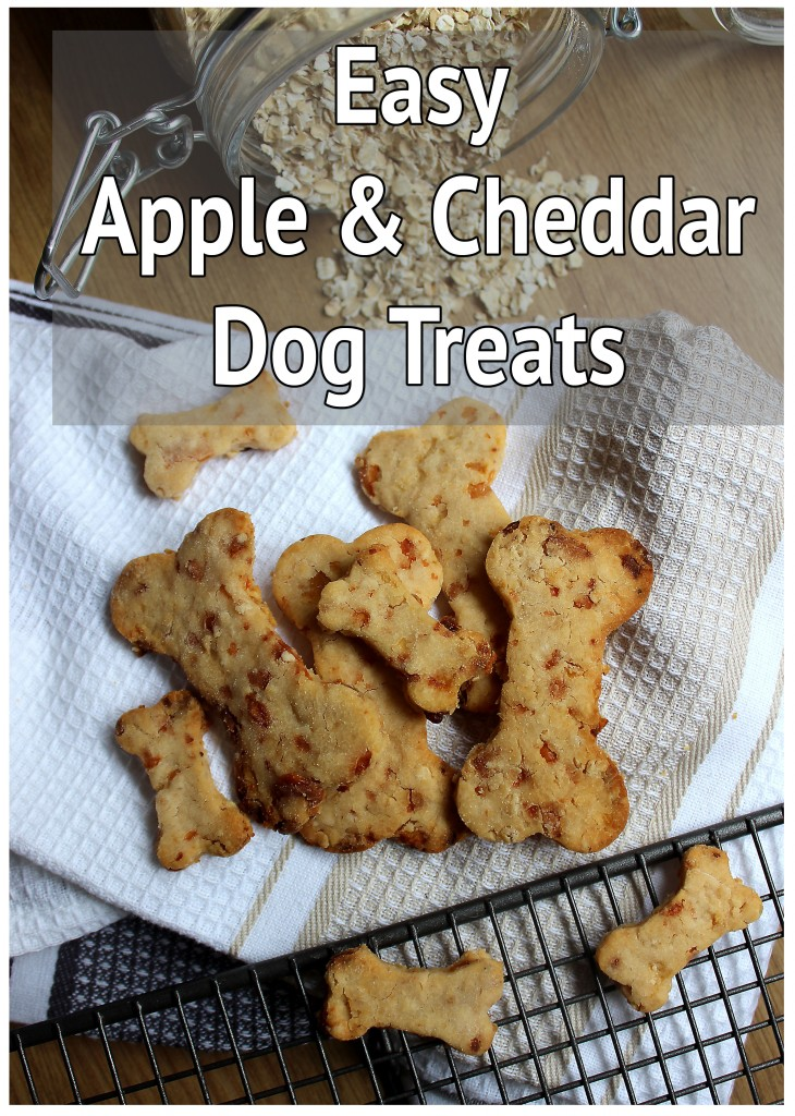 Apple and Cheddar Dog Biscuits Pinterest