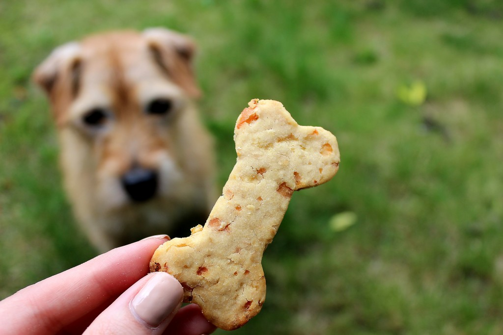 Apple and Cheddar Dog Biscuits (2)