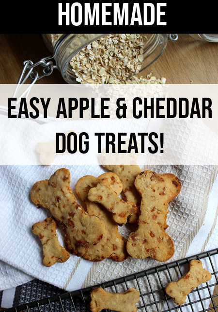All Natural Homemade Apple and Cheddar Dog Biscuits Recipe