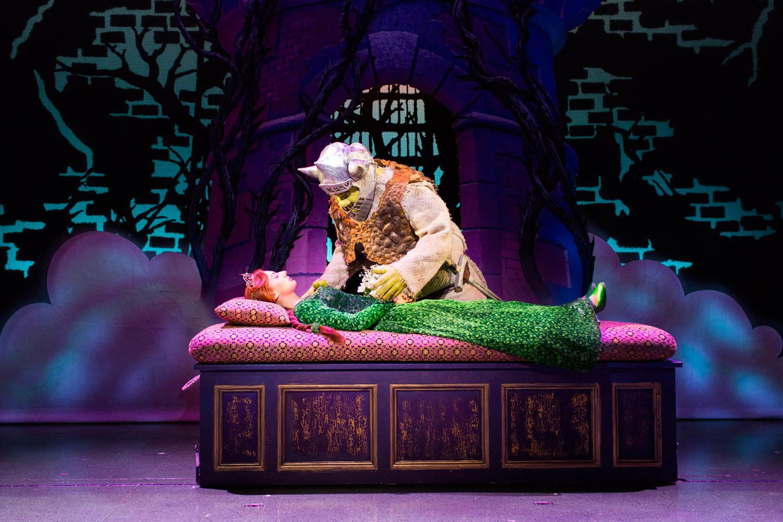 Shrek The Musical Xameliax