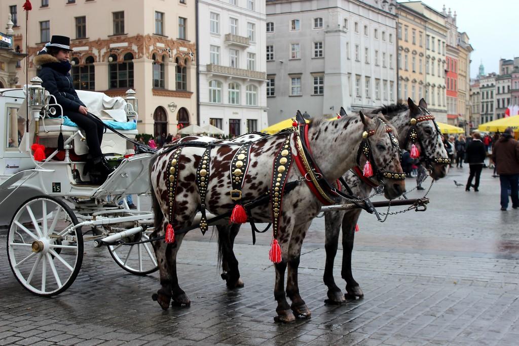 Krakow Poland 2015 (18)