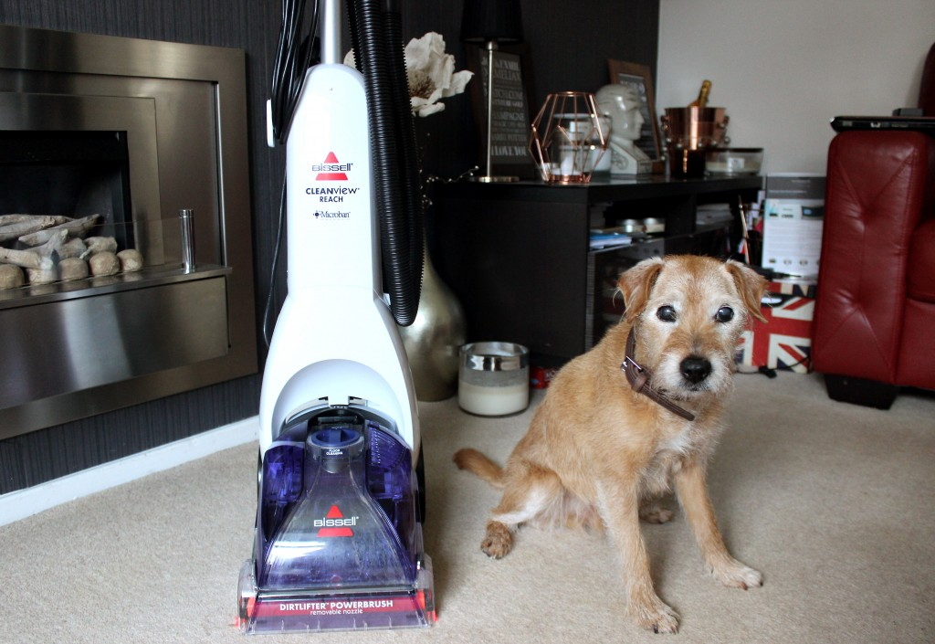 Bissell Carpet Cleaner for Pets (8)