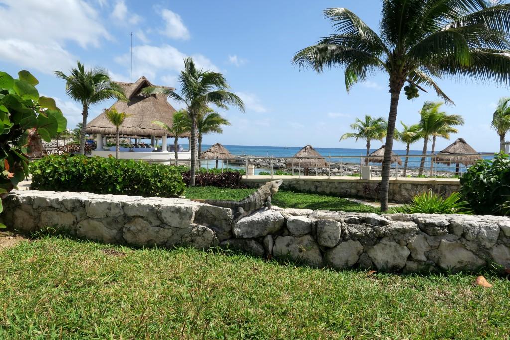 Hard Rock Hotel Riviera Maya Review