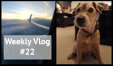 xameliax weekly vlog