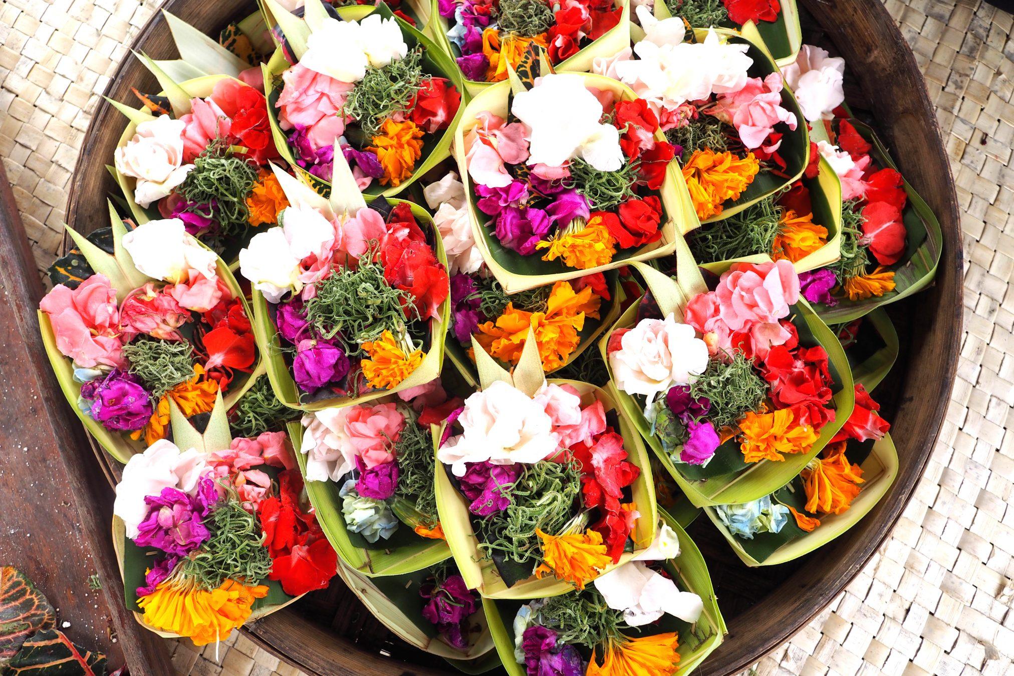 Rice Fields, Cooking Class in Bali and Uluwatu Temple