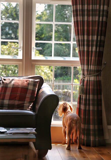 dog friendly cottages scotland