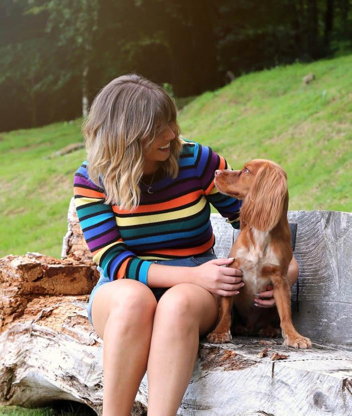 scottish holidays dog friendly